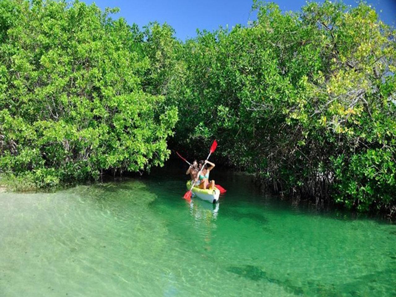 Bodas en la playa paquetes - agua verde