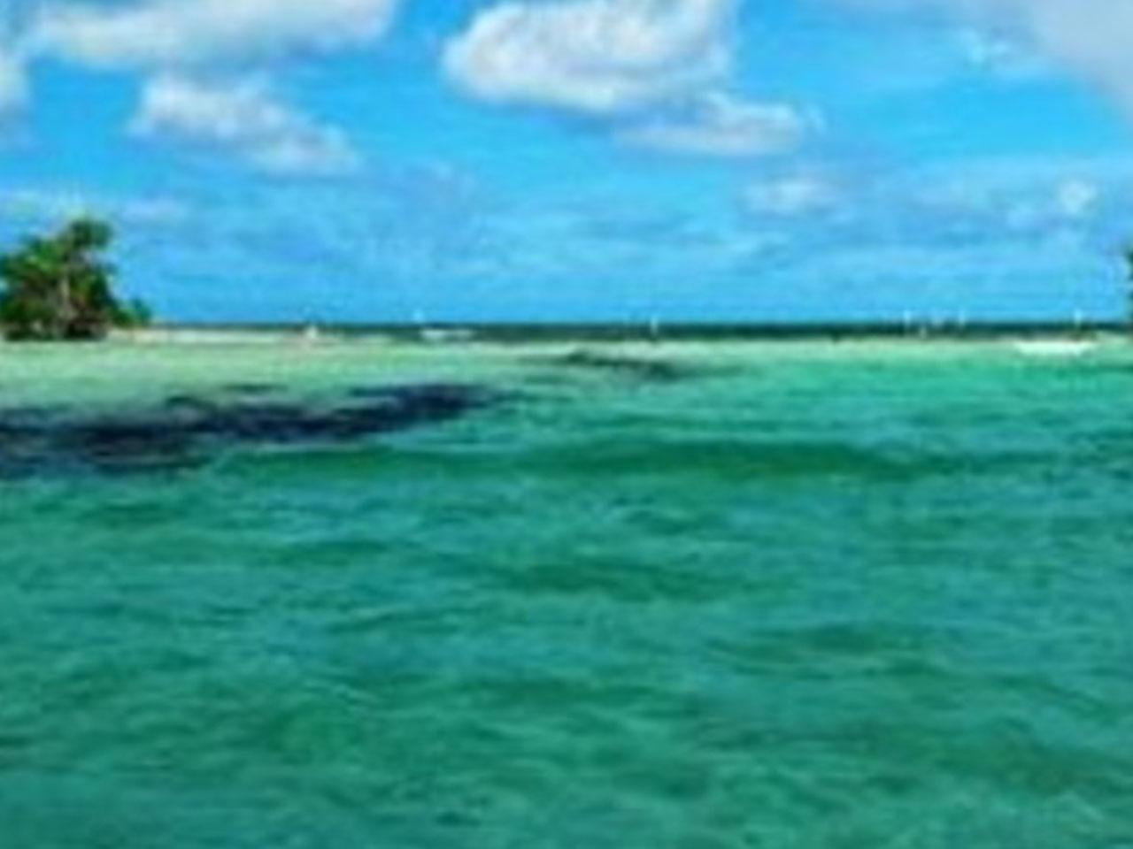 Bodas en la playa - mar